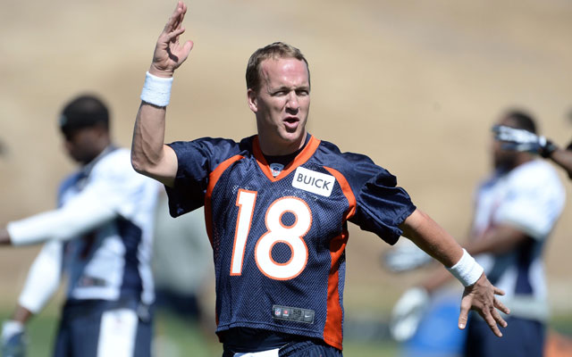 Peyton Manning is the obvious favorite for the 2014 NFL MVP.