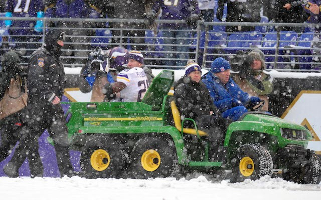 Adrian Peterson was carted off the field in the second quarter on Sunday. (USATSI)