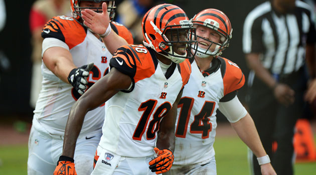 The Bengals will be 2013's 'Hard Knocks' team on HBO.