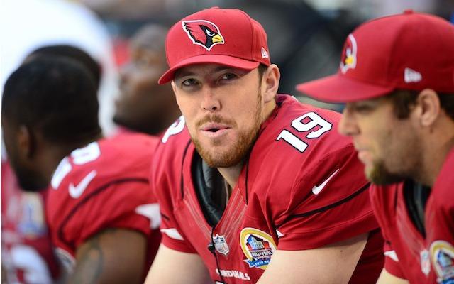 Former Cardinals quarterback John Skelton will be wearing 49ers red now. (USATSI)