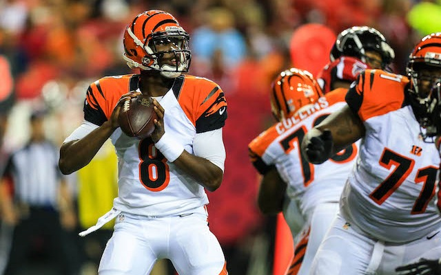 Josh Johnson is done in Cincinnati after only one season. (USATSI)