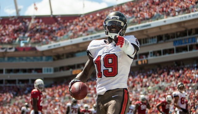 Tampa Bay wide receiver Mike Williams has been placed on injured reserve. (USATSI)