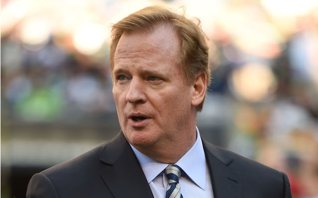 Roger Goodell will likely have to answer a few more questions about Ray Rice's suspension. (USATSI)