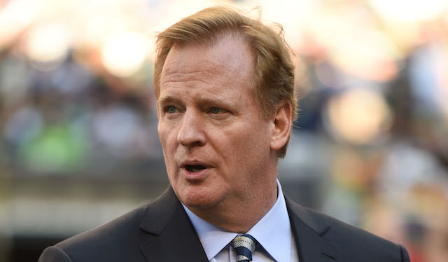 A women's rights group will fly anti-Goodell banners on Sunday.