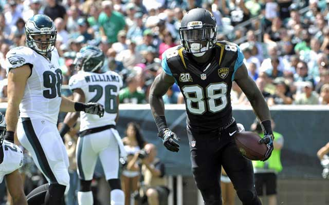Image result for jaguars eagles