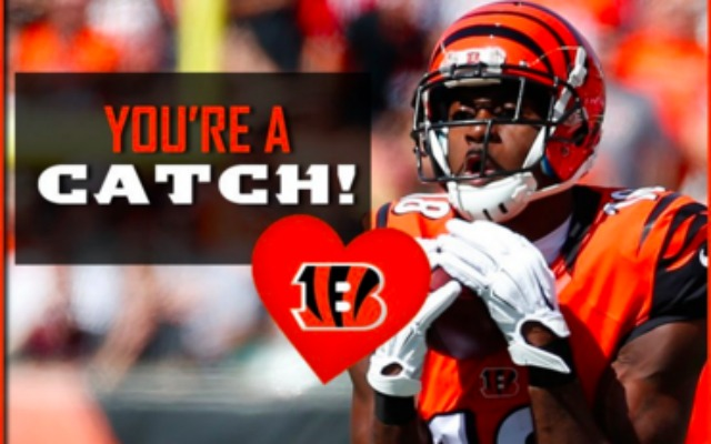 LOOK Bengals get romantic create lastminute Valentines Day – Sports Valentines Cards