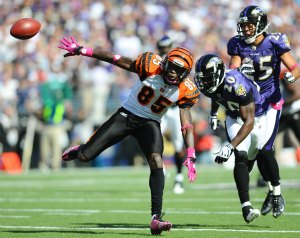 C. Ochocinco has struggled this year, which has surprised E. Reed (US Presswire).