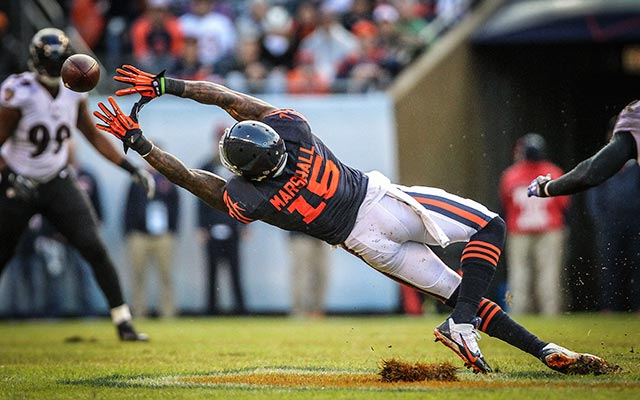 Brandon Marshall dominated in 2013. (USATSI)