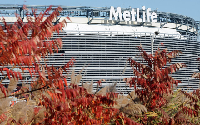 Team doctors and trainers were questioned at MetLife Sunday.