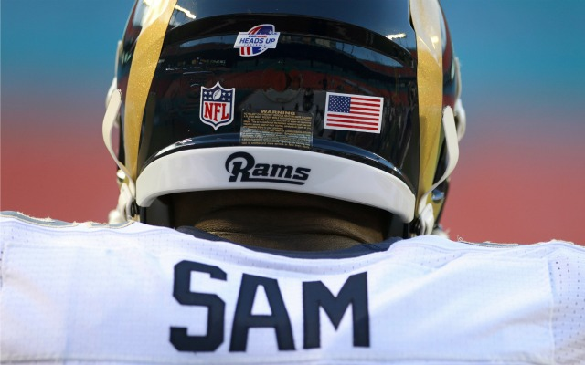 Michael Sam: 'I am not the only gay person in the NFL'
