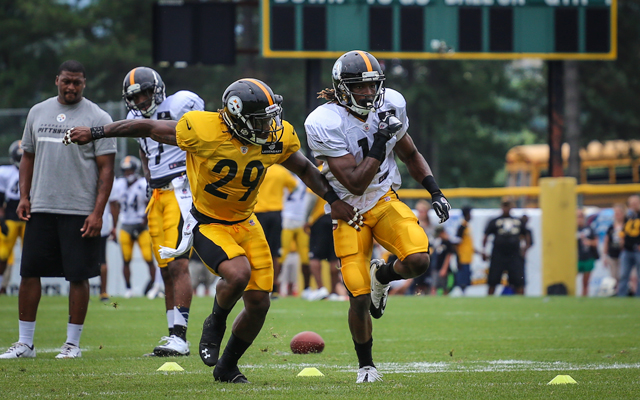 Shamarko Thomas, Markus Wheaton, Steelers 2013 training camp, Shamarko Thomas free agent, Shamarko Thomas rookie