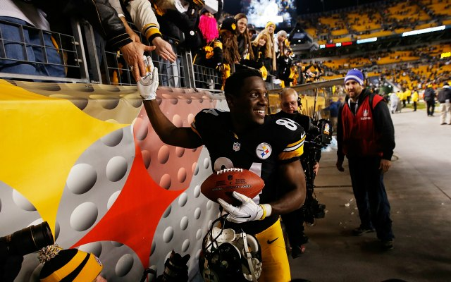 Antonio Brown helped lead Pittsburgh to the AFC North title. (Getty Images)