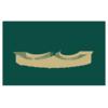 Jacksonville Dolphins logo