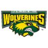 Utah Valley State Wolverines logo