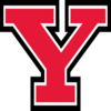 Youngstown St. Penguins logo