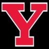 Yngstown St. Penguins logo
