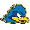 home team logo