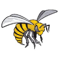 Alabama State Hornets vs. Cincinnati Bearcats Live Score ...