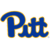Pittsburgh Panthers team logo