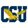 Coppin St. Eagles logo