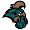 C. Carolina Chanticleers logo