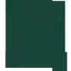 Michigan St. Spartans logo