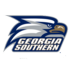Georgia Southern Eagles