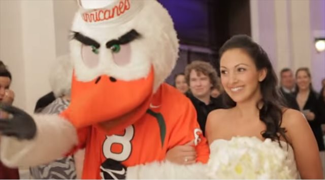 Sebastian the Ibis: the perfect wedding 'crasher.' (Miami Hurricanes)