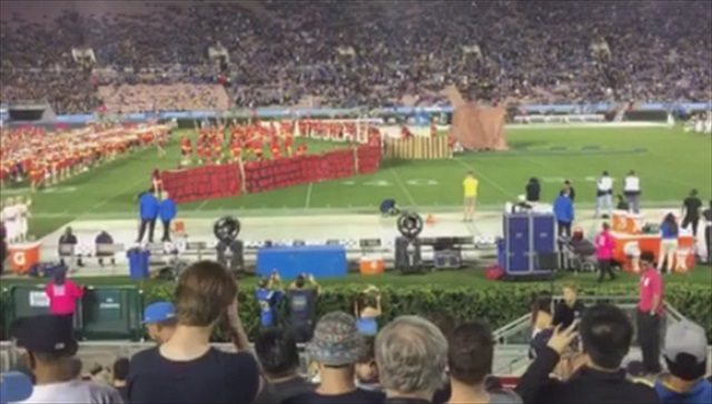 Yes, that's a horse. A Trojan one. (Larry Brown/Vine)