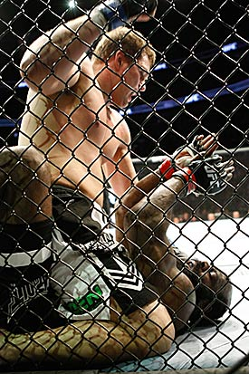 Kimbo Slice vs. Matt Mitrione (Getty Images)