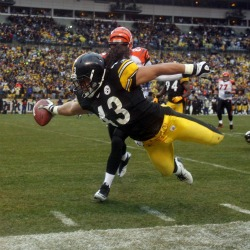 T. Polamalu sold the most jerseys in the NFL this year.
