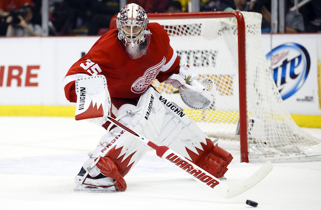 Jimmy Howard is the biggest reason the Red Wings are winning this postseason. (USATSI)