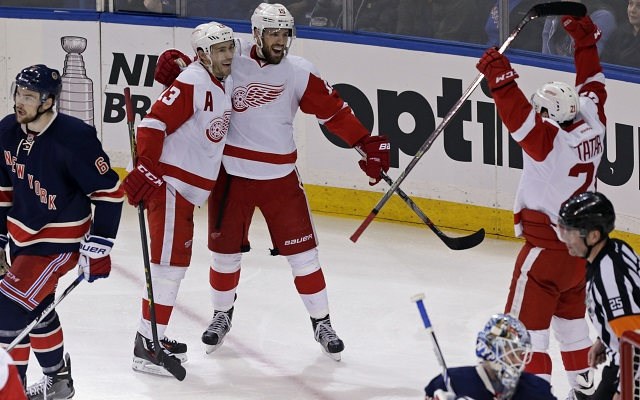 The Detroit Red Wings clinched their 25th straight playoff berth. (USATSI)