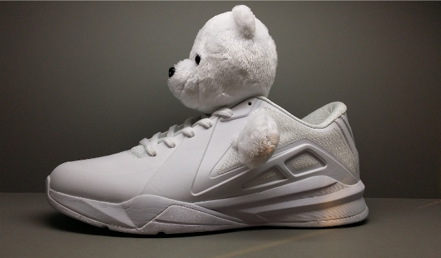 Metta World Peace Basketball Shoes