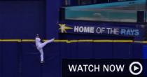 Kiermaier (MLB.com)