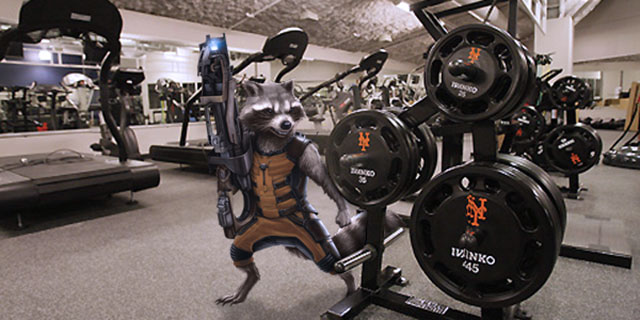 Mets release baby raccoon found in weight room at Citi Field ...