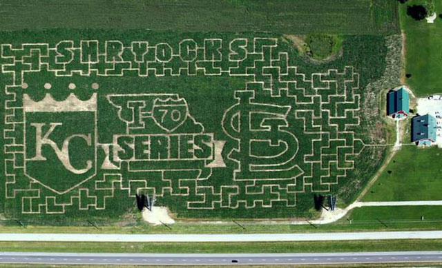 LOOK: Corn maze predicts Cardinals-Royals 'I-70' World Series