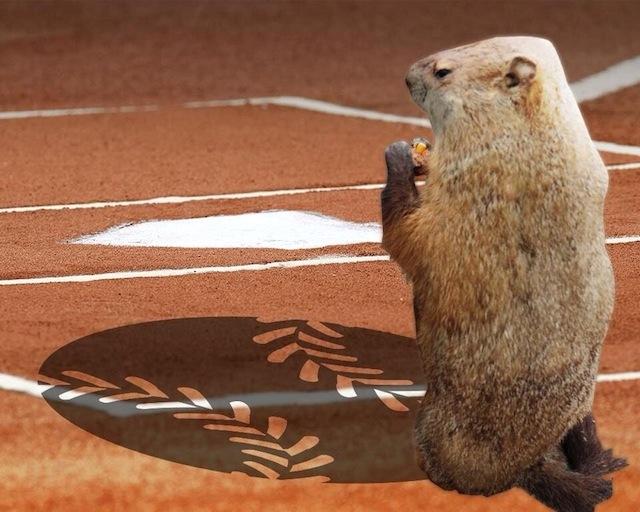 groundhog day analysis Groundhog day (1993) on imdb: plot summary, synopsis, and more.