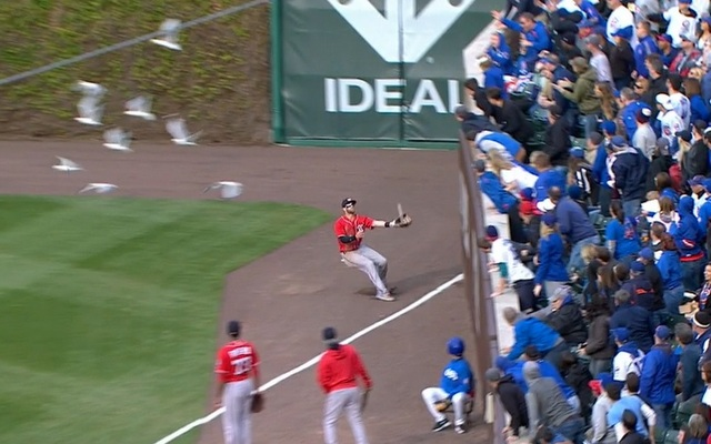 Bryce Harper's day of crashing into walls are over.