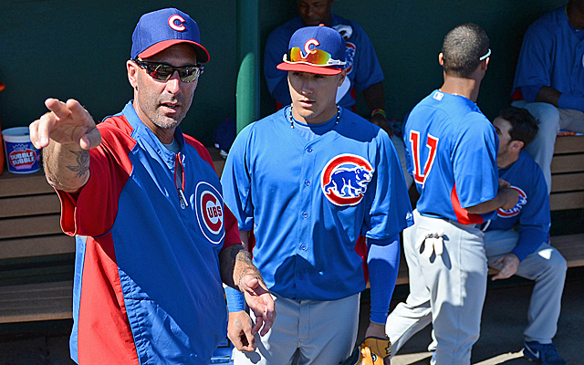 Cubs team preview