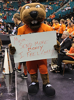 Oregon State's mascot has the Vegas vibe. (Dennis Dodd)