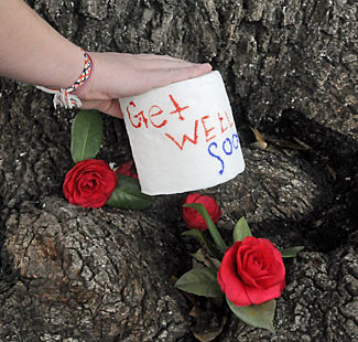 A student puts a roll of toilet paper on the oaks at Toomer's Corner on Auburn University's campus. (AP)