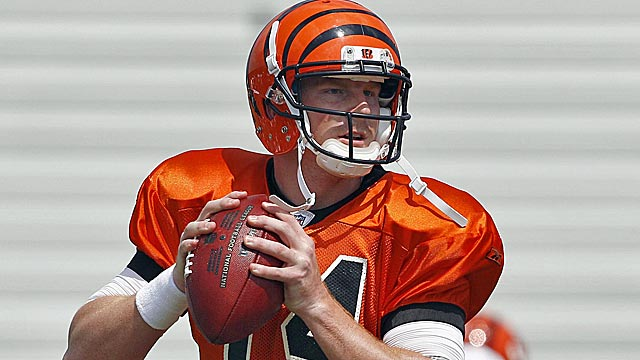 Andy Dalton's poise and resilience are two of the qualities setting him apart from the rookie pack. (US Presswire)