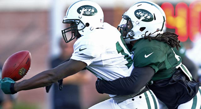 Santonio Holmes is day to day after hurting his ribs in practice on Saturday. (US Presswire)