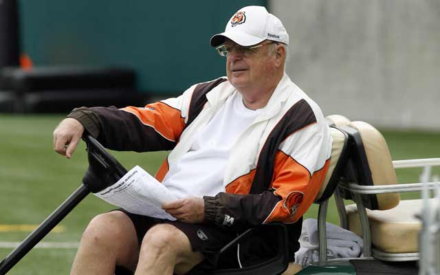 Mike Brown takes in a Bengals minicamp this spring. . (USATSI)