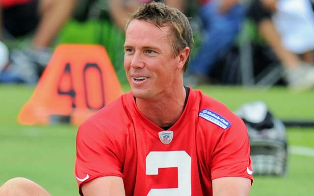 Atlanta's owner would appreciate it if his players tried to defend Matt Ryan more. (USATSI)