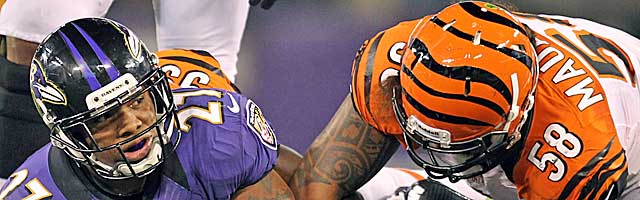 Ray Rice and Rey Maualuga can make plans for the playoffs from the AFC North. (USATSI)