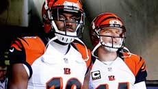 How Bengals became good