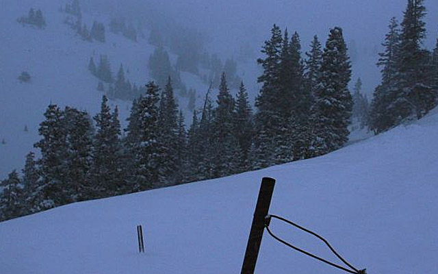 Snow falls near where five backcountry snowboarders were found dead on Loveland Pass, Colo. (AP)