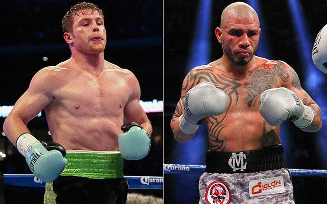 miguel cotto vs canelo alvarez fight preview a star in the